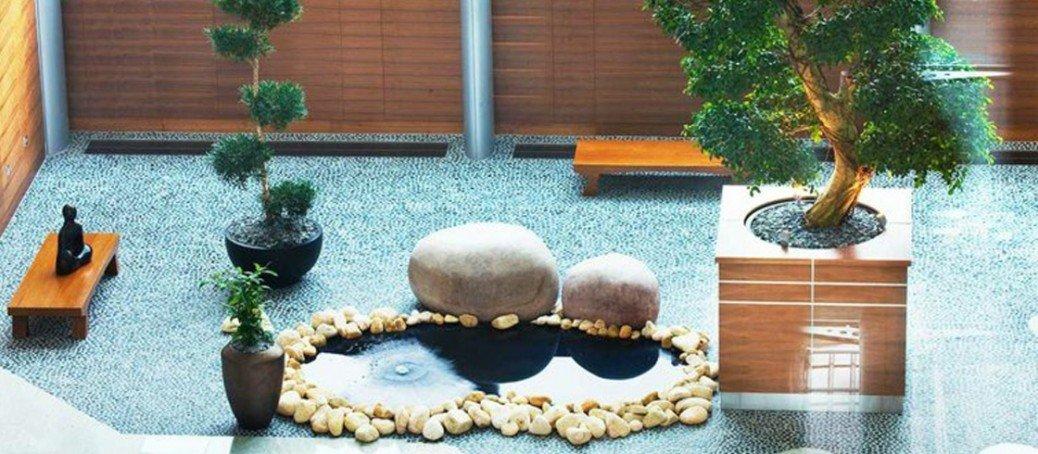 Bonsay tienda online especializada en bonsay - Como se cuida un bonsai ...